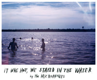 It Was Hot, We Stayed In The Water by the Microphones (LP)
