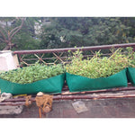 Veg Garden Ready - Combo Offers ( Bag + Potting Soil + Seed ) - SK Organic Farms