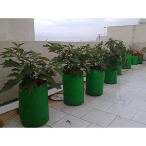 HDPE Grow bag for Terrace/Kitchen Garden - Round - SK Organic Farms