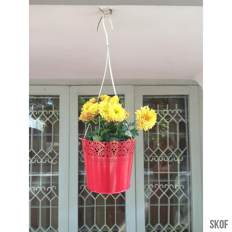 CEILING HUNG-Gardening Accessory-Gardenia-SK Organic Farms