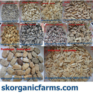 Organic Vegetable Seeds - Pack 1 - SK Organic Farms