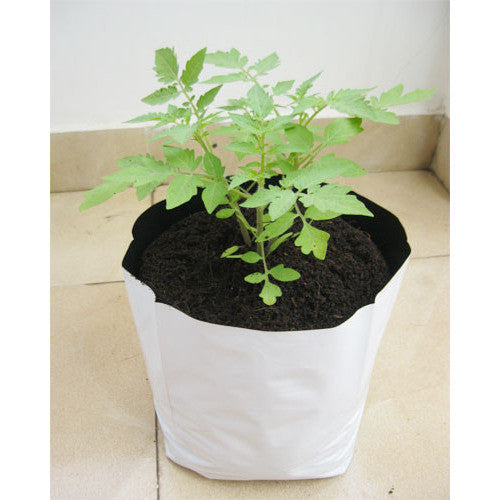 LDPE Grow bag for Terrace/Kitchen Garden