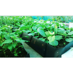 Grow Troughs - SK Organic Farms