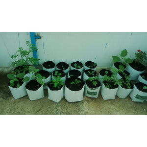 LDPE Grow bag for Terrace/Kitchen Garden - SK Organic Farms