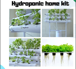 Hydroponic Home kit