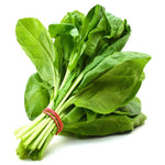 Spinach All Green-Seeds-Biocarve-SK Organic Farms