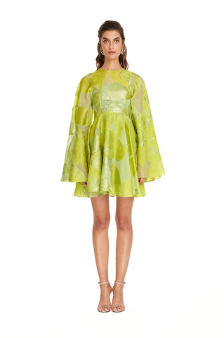 Lime Valen Dress