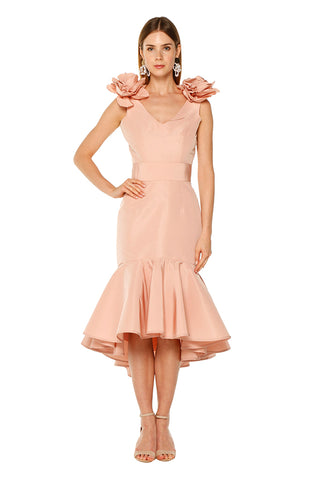Blush Ruffle Flower Dress