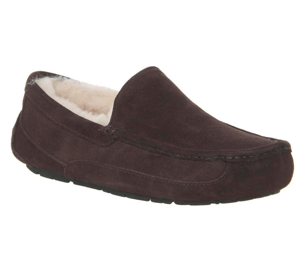 Mens Ugg Ascot Slipper Espresso Suede New Uk Size 7