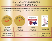 Load image into Gallery viewer, what is the right pheromone for you? strenght of pheromoneswhat is the right pheromone for you? strenght of pheromones