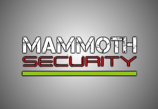 Mammoth Motorcycle Security