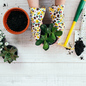 The Ultimate Guide To Becoming A Greener Gardener