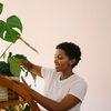 5 Common Indoor Plant Myths: Debunked