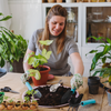 Re-potting your houseplant: Everything you need to know!