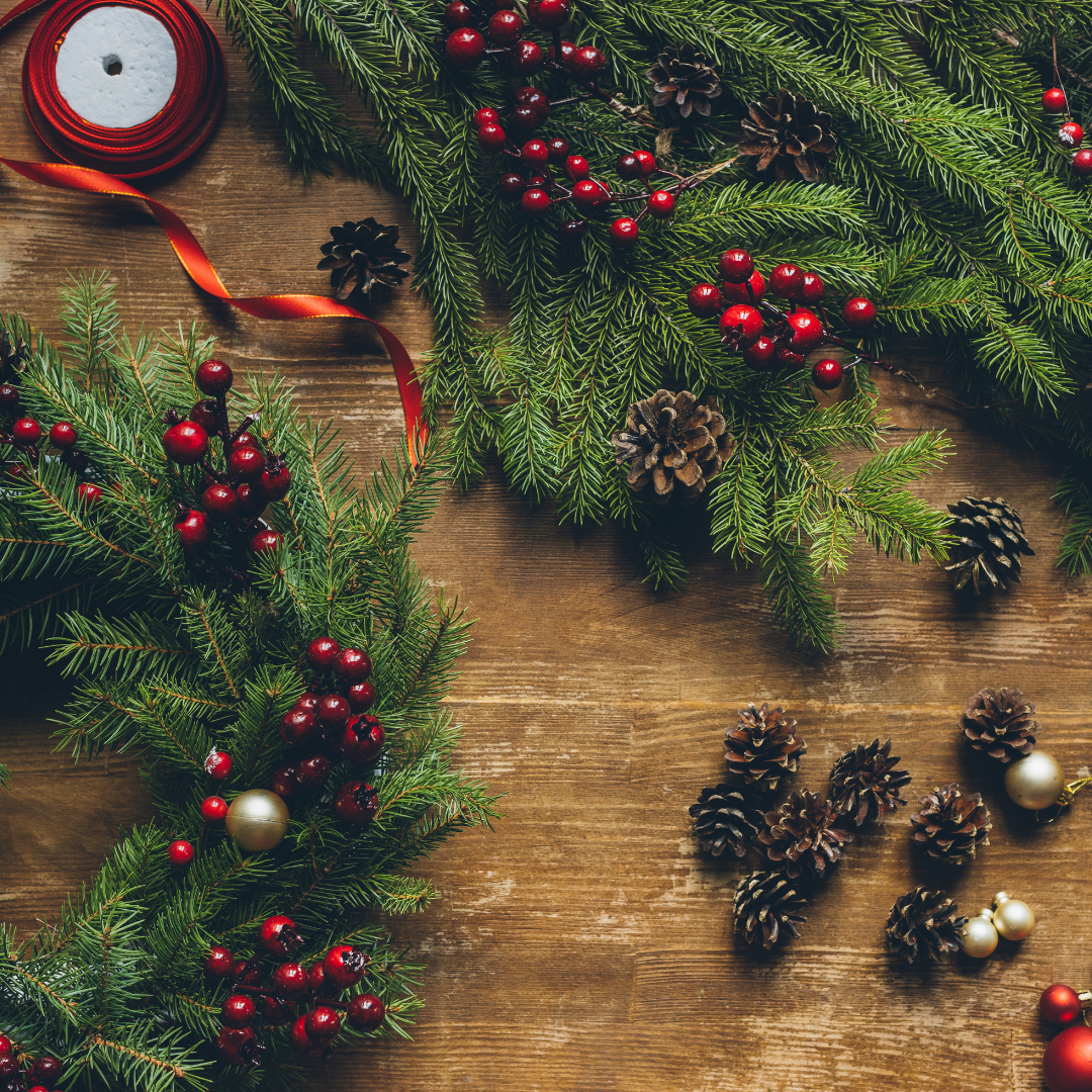 Plant Spotlight: The Christmas Wreath