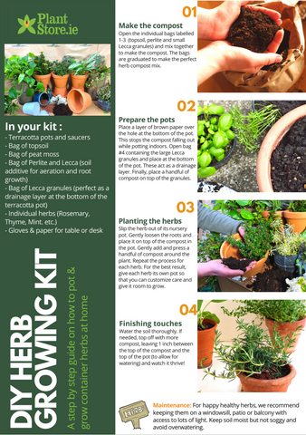 Step by Step Guide on growing your own herbs at home