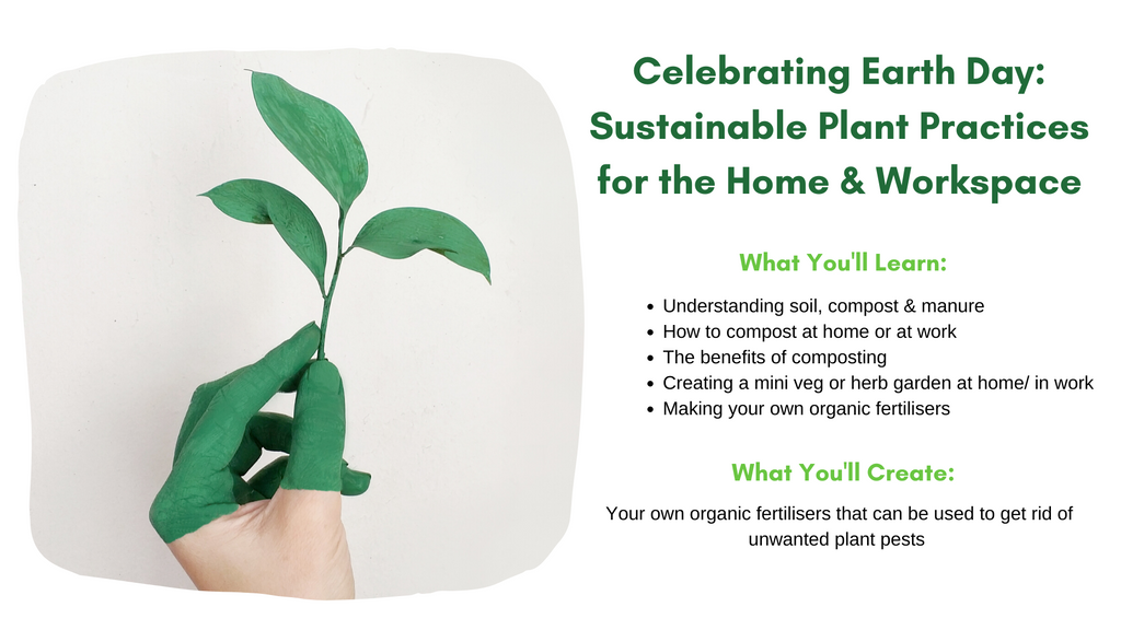 Sustainable practices for the home and work place