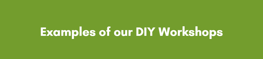 PlantStore Ireland DIY Team Building Workshops