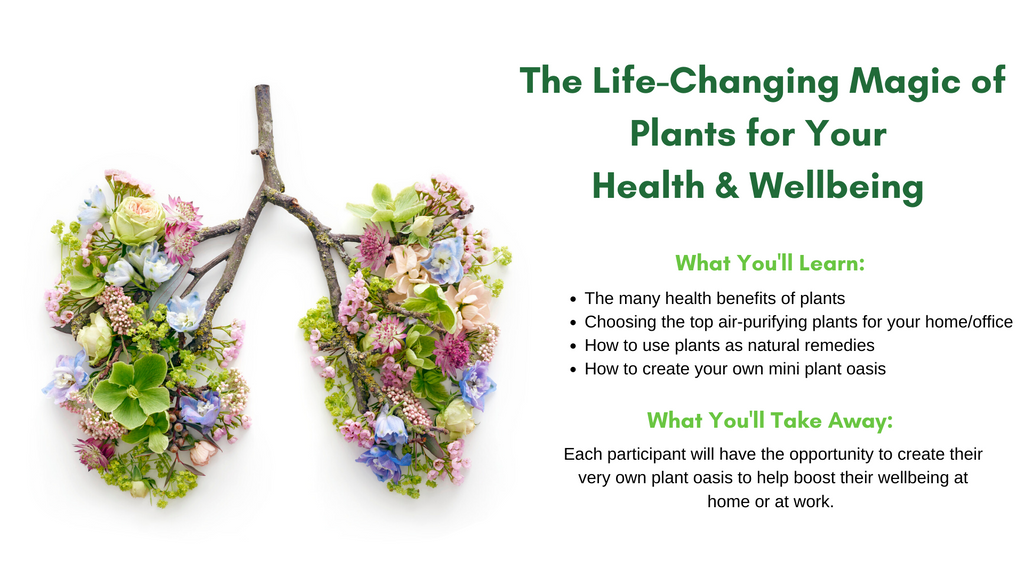 The many health benefits of plants