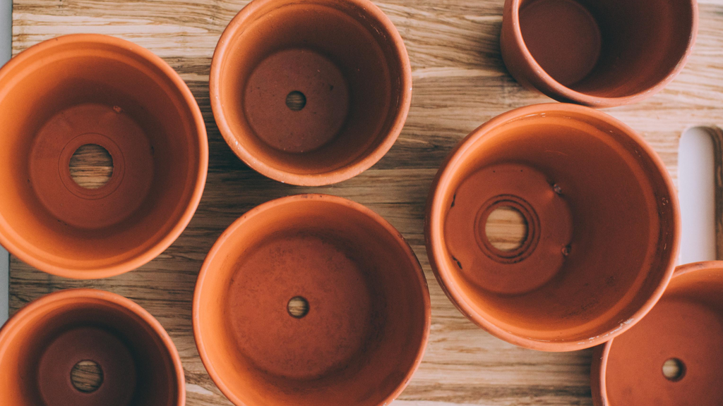 An image of a selection of terracotta indoor plant pots