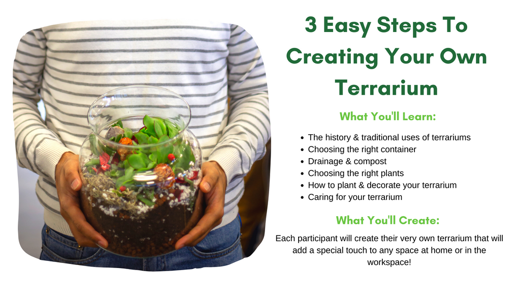 How to create your own Terrarium Workshop at Home
