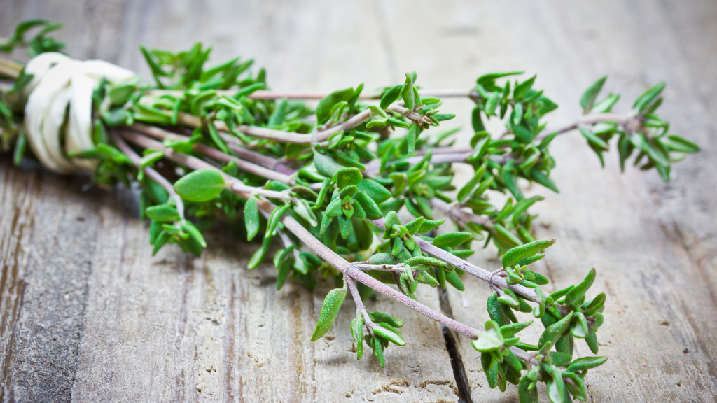 thyme uses