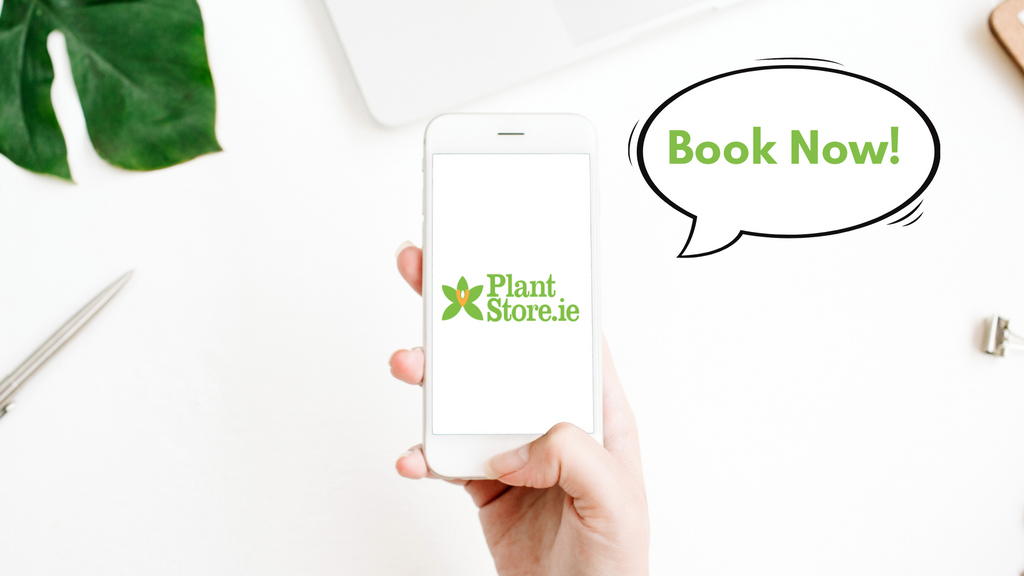 A woman's hand holding a white iPhone displaying the Plant Store Ireland logo on its screen