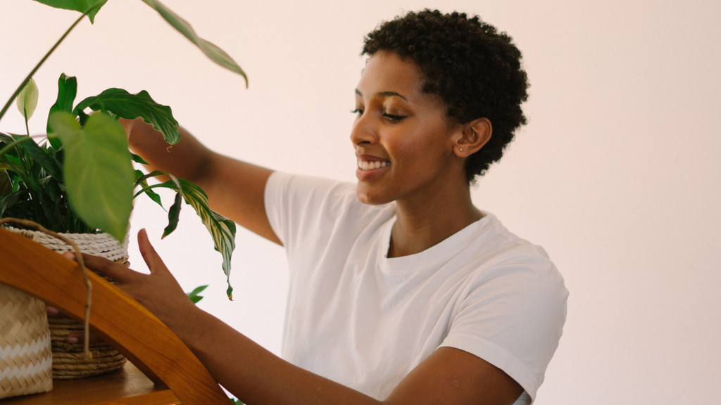 Woman caring for her Monstera Deliciosa