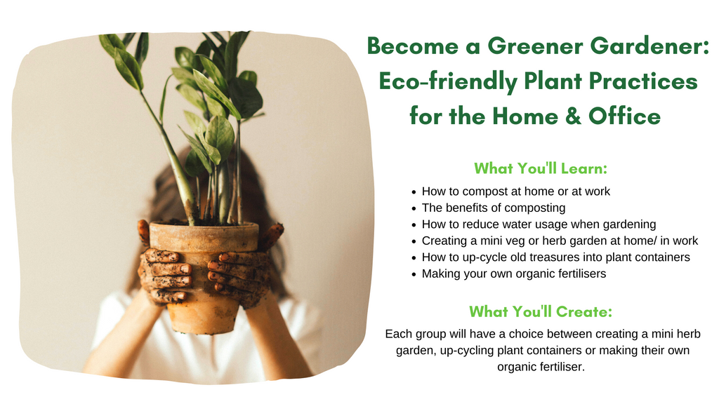 Sustainable gardening plant practices for the home or office