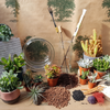 Christmas Limited Edition: Create Your Own Festive Terrarium Kit