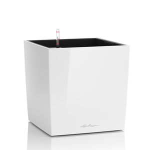 Lechuza Cube Plant Containers - White High Gloss