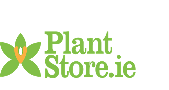 Plant Store