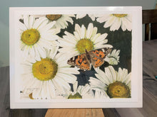 "Load image into Gallery viewer, Daisies and Butterfly Print, ""Radiance"""
