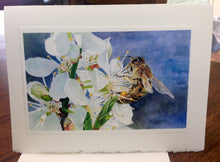 "Load image into Gallery viewer, Honeybee on White Cherry Blossom Greeting Card, ""Buzz Worthy"", printed on card"
