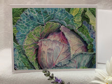 "Load image into Gallery viewer, Cabbage Notecards, ""Humble Glory"", pack of 3"