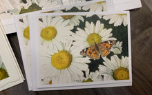 "Load image into Gallery viewer, Daisies and Butterfly Notecards, ""Radiance"", pack of 3"