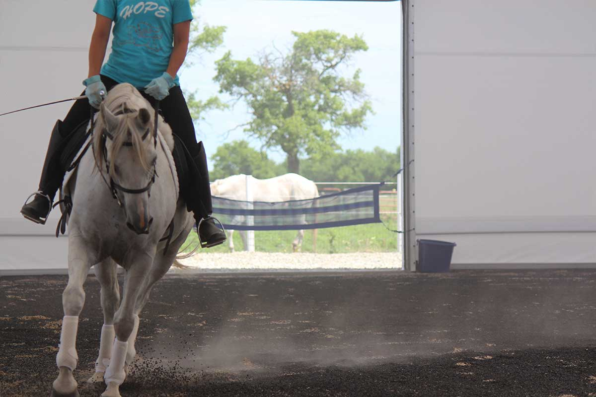 Arena Footing Gallery - Photo 10