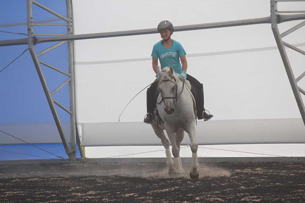 Arena Footing Gallery - Photo 11