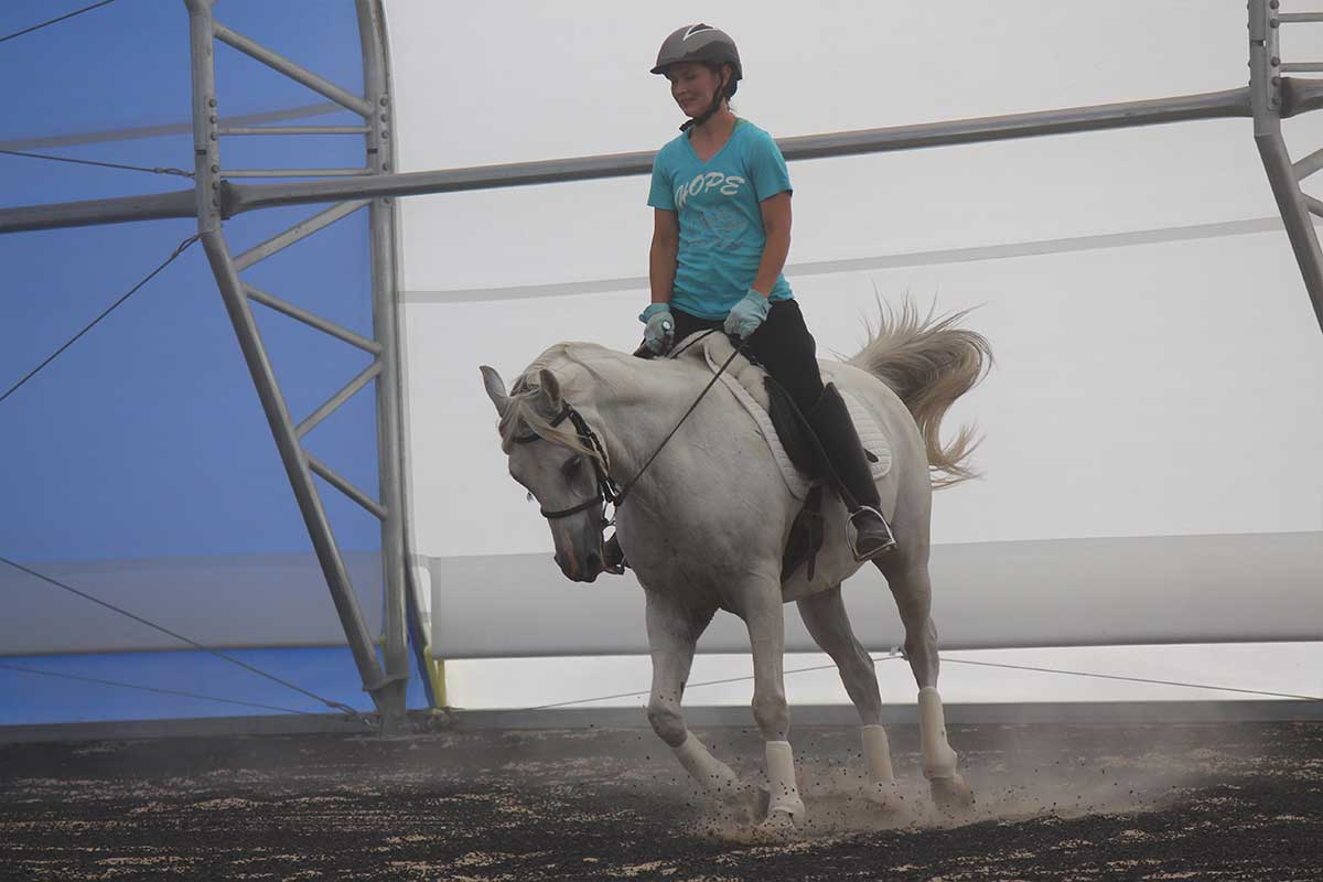 Arena Footing Gallery - Photo 12