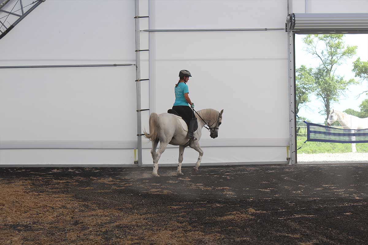 Arena Footing Gallery - Photo 9