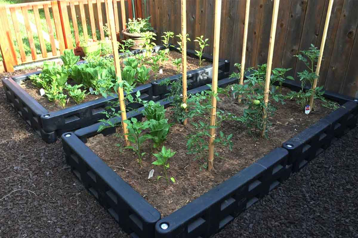 add mulch and plants and watch them grow