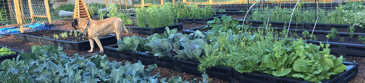 Using playground borders for raised garden beds
