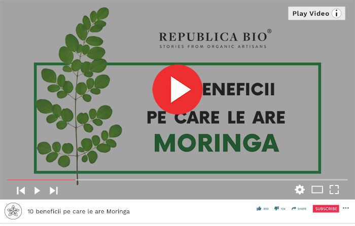 10 beneficii pe care le are Moringa - Video Republica BIO