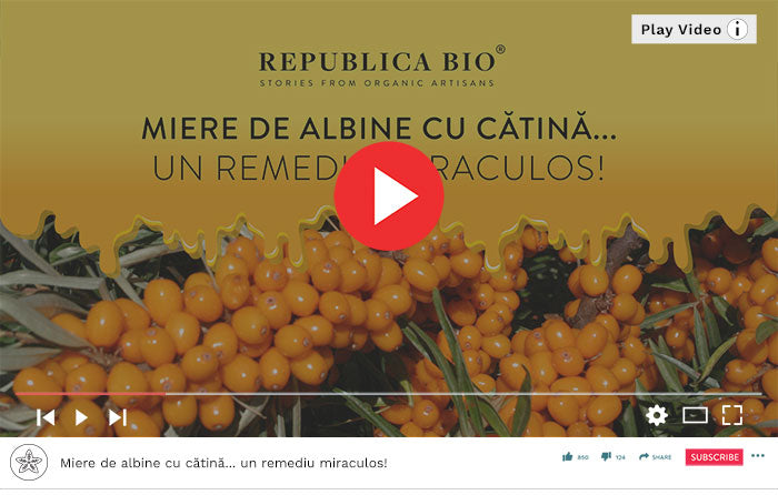 Miere de albine cu catina... un remediu miraculos! - Video Republica BIO