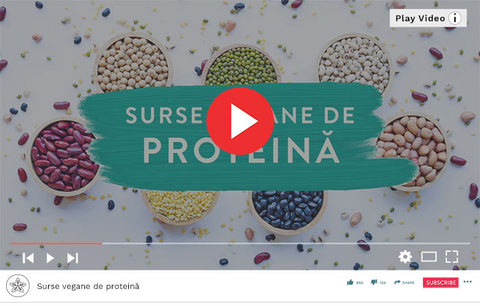 25 de surse vegane de proteină - Video Republica BIO
