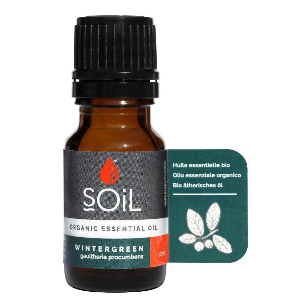 Ulei Esential Wintergreen - Perisor SOiL, bio, 10 ml imagine produs 2021 SOiL republicabio.ro