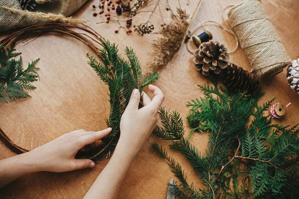 Crafting a Christmas wreath from evergreen branches