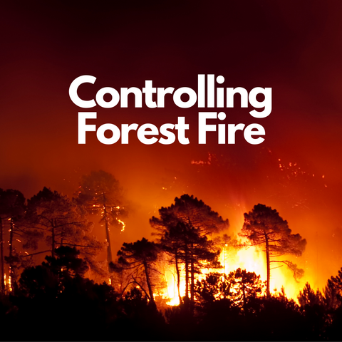 control forest fire