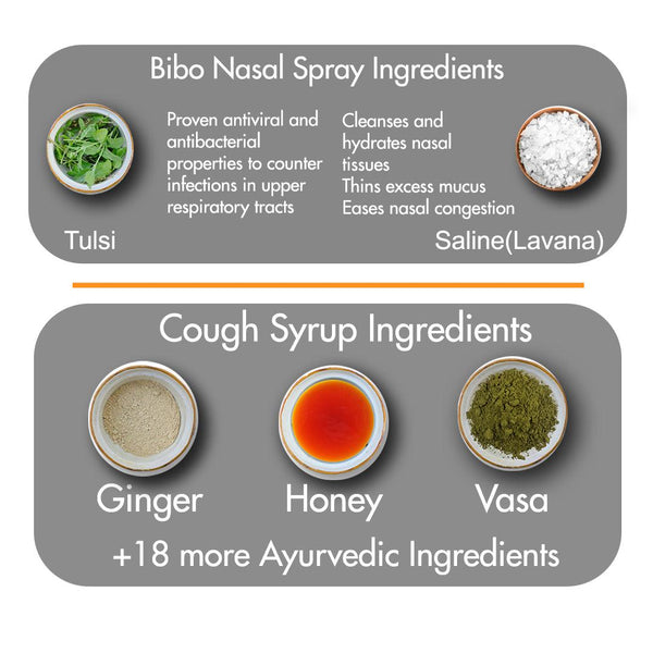 Bibo Natural Throat Relief Pack | Ayurveda for Dry Cough | Sore Throat | Bibo Syrup & Spray | 2 Products