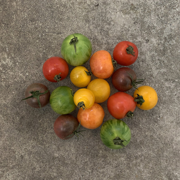 Natural Heirloom Cherry Tomatoes